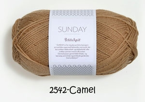 2542 camel