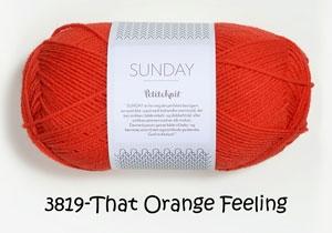 3819 that orange feeling